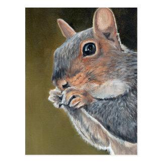Squirrel Close Up Art Postcard