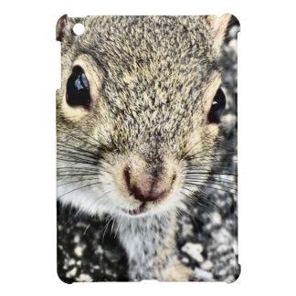 Squirrel Close Up! iPad Mini Cases