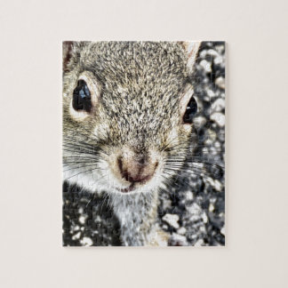 Squirrel Close Up! Jigsaw Puzzle