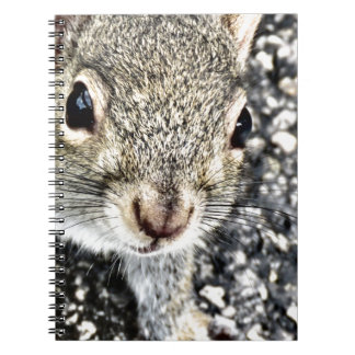 Squirrel Close Up! Notebook