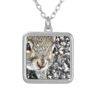 Squirrel Close Up! Silver Plated Necklace
