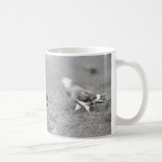Squirrel Coffee Mug