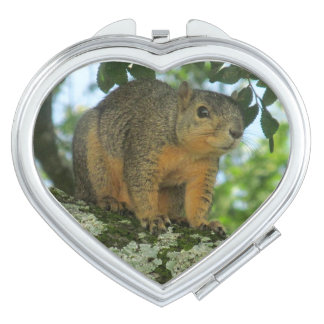 Squirrel compact mirror