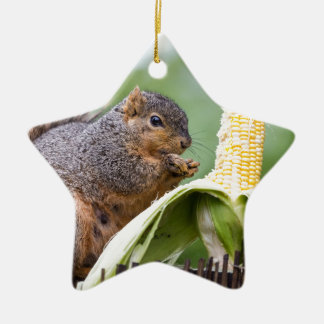 Squirrel Corn Ceramic Ornament