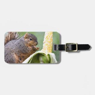 Squirrel Corn Luggage Tag