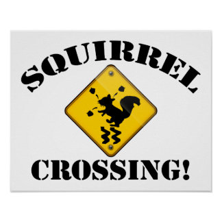 Squirrel Crossing Road Sign Poster