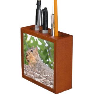 Squirrel Desk Organizer