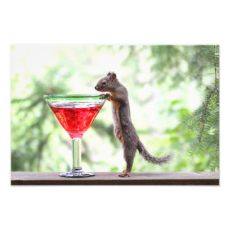 Squirrel Drinking a Cocktail Photo Art