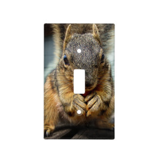 Squirrel Eating 1 Light Switch Cover