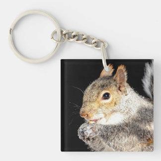 Squirrel eating a nut keychain