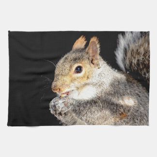 Squirrel eating a nut kitchen towel