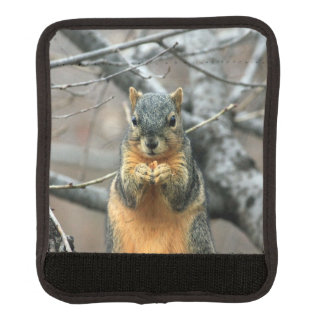 Squirrel Eating a Nut Luggage Handle Wrap