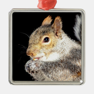 Squirrel eating a nut metal ornament