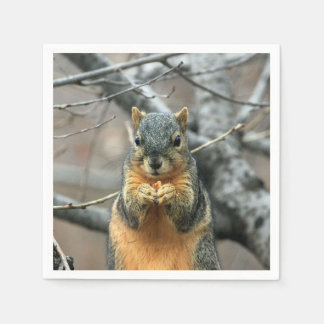 Squirrel Eating a Nut Paper Napkin