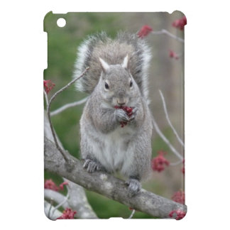 Squirrel eating case for the iPad mini