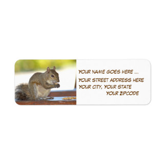 Squirrel eating peanuts Return Address Labels