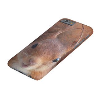 Squirrel ~ Écureuil ~ squirrels ~ by GLINEUR Barely There iPhone 6 Case