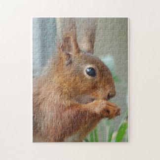 Squirrel ~ Écureuil ~ squirrels ~ by GLINEUR Jigsaw Puzzle