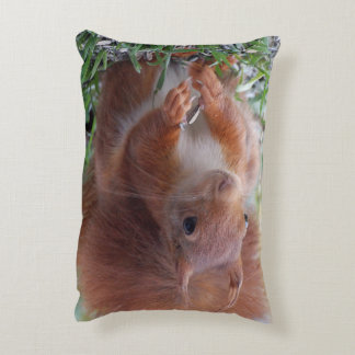 Squirrel ~ Écureuil ~ squirrels ~ by JL GLINEUR Decorative Pillow