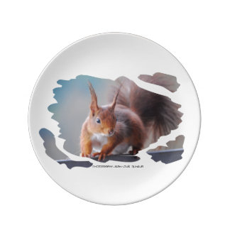 Squirrel ~ Écureuil ~ squirrels ~ by JL GLINEUR Porcelain Plate
