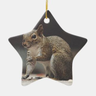 Squirrel Fluffy Ceramic Ornament