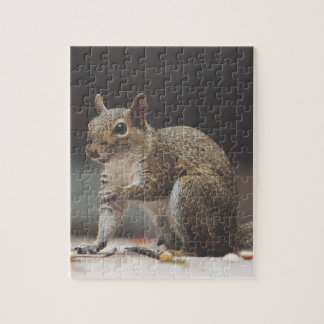 Squirrel Fluffy Jigsaw Puzzle