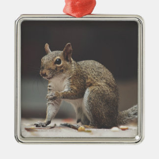 Squirrel Fluffy Metal Ornament