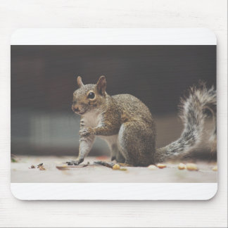 Squirrel Fluffy Mouse Pad