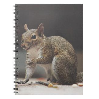 Squirrel Fluffy Notebook