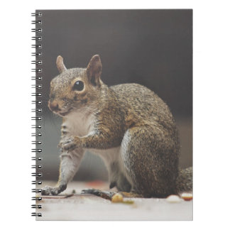 Squirrel Fluffy Spiral Notebook