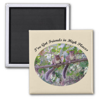 Squirrel - Friends in High Places Magnet