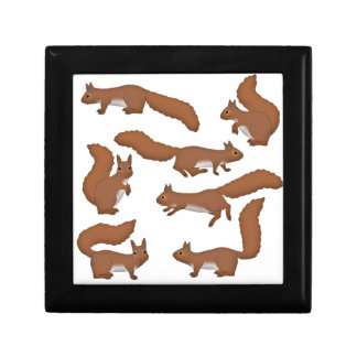 Squirrel Gift Box