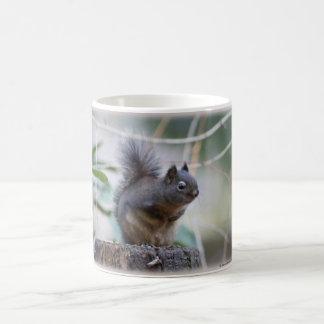 Squirrel Greeting Coffee Mug