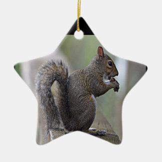 Squirrel (Grey) Ornaments