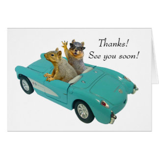 Squirrel in Car Card