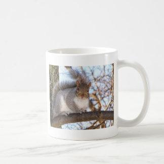 Squirrel in Snow.JPG Coffee Mug