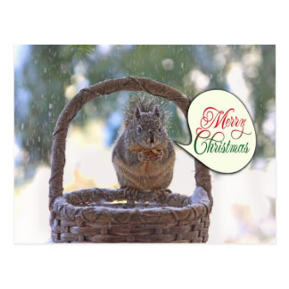Squirrel in Snow Saying Merry Christmas Postcard