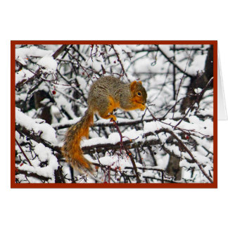 Squirrel in the Snow 6142 Christmas Card