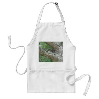 Squirrel  In The Tree Standard Apron
