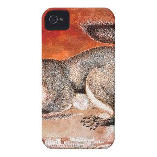 SQUIRREL iPhone 4 CASES