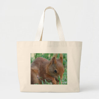 Squirrel - Jean Louis Glineur Photography Large Tote Bag