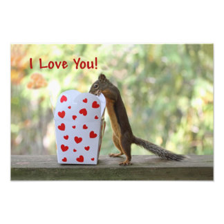 "Squirrel Looking Inside Heart Box, ""I Love You"" Art Photo"