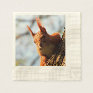 Squirrel Mammal Rodent Disposable Napkins