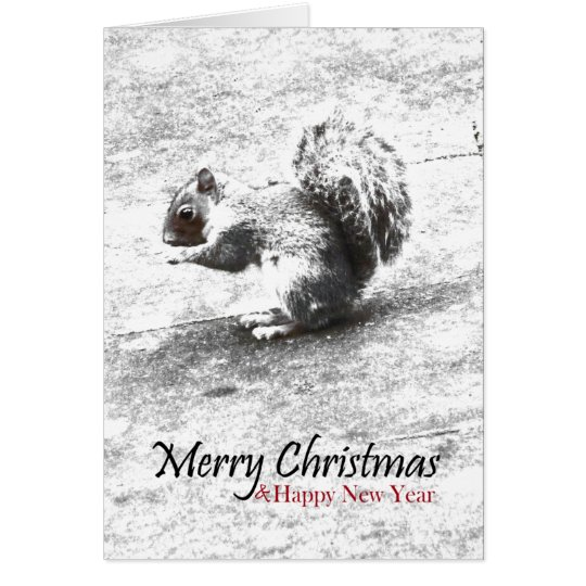 Squirrel, Merry Christmas & New Year Greeting Card