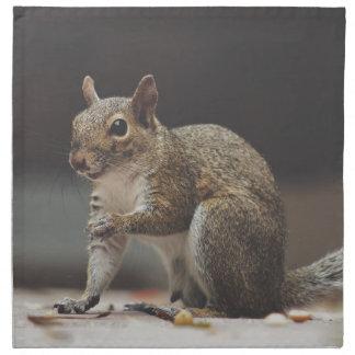 squirrel napkin