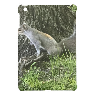 Squirrel next to a tree with green grass iPad mini cases