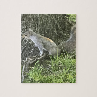 Squirrel next to a tree with green grass jigsaw puzzle