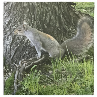 Squirrel next to a tree with green grass napkin