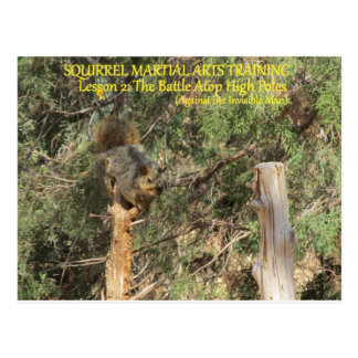 Squirrel Nnja Training Tips Postcard