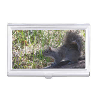 Squirrel on a Log Business Card Holder